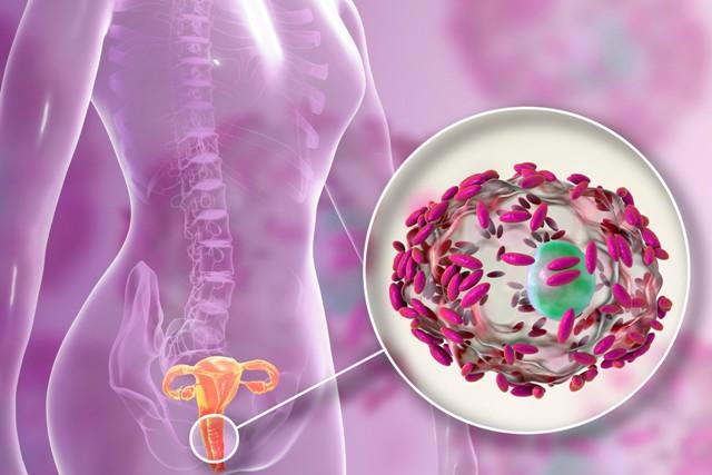 Вагинит и вагиноз лечение
